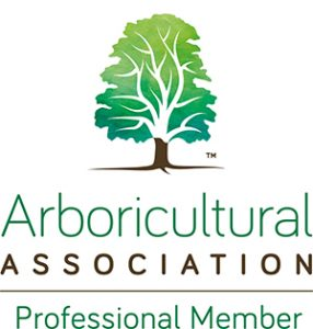The Blue Tree Company Arb Association